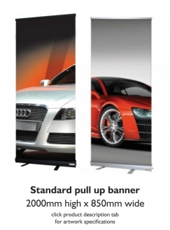 Banner Pull Up Standard