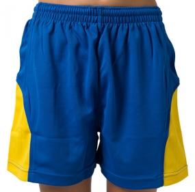 Junior Victory Soccer Shorts